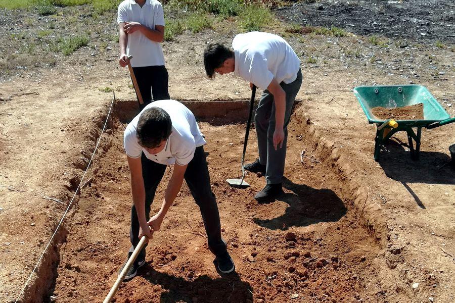 sociales-excavacion